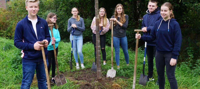 Baumpflanzprojekt 1